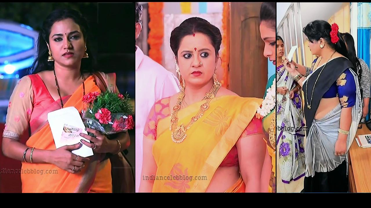 Kannada TV serial actress hot sari caps mix