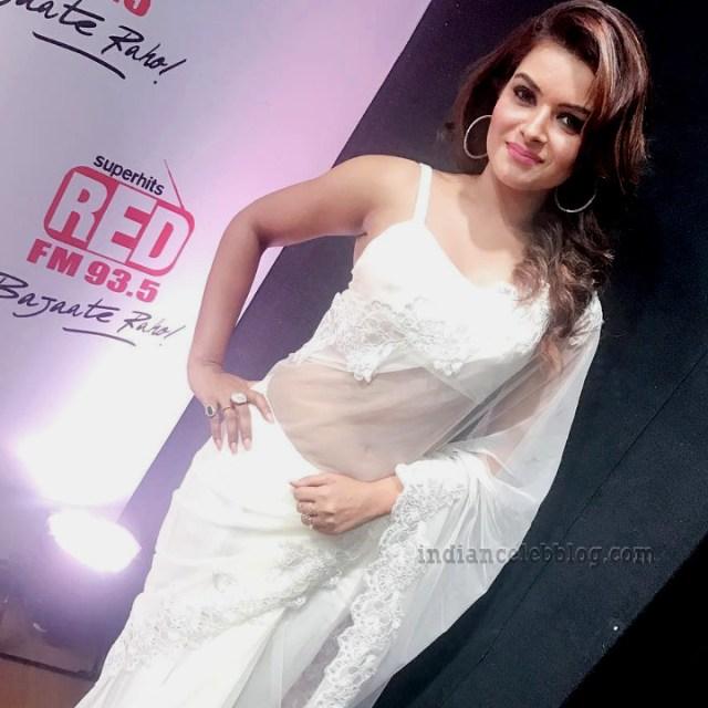 Shilpa Raizada Hindi TV actress CTS1 7 hot saree photo