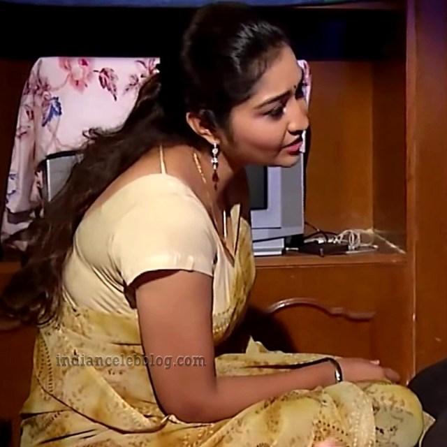 Neelima rani tamil tv actress Aranmanai KS1 2 saree photo