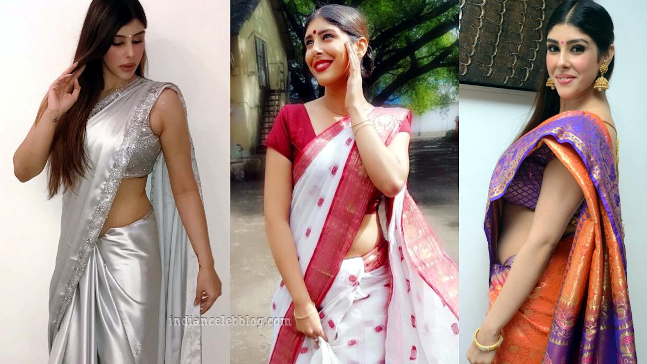 Aditi singh telugu actress hot saree photos