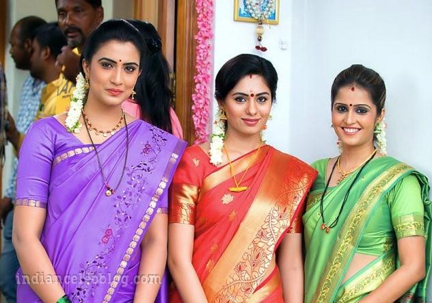 Deepa sannidhi kannada actress MSS1 6 hot sari pic