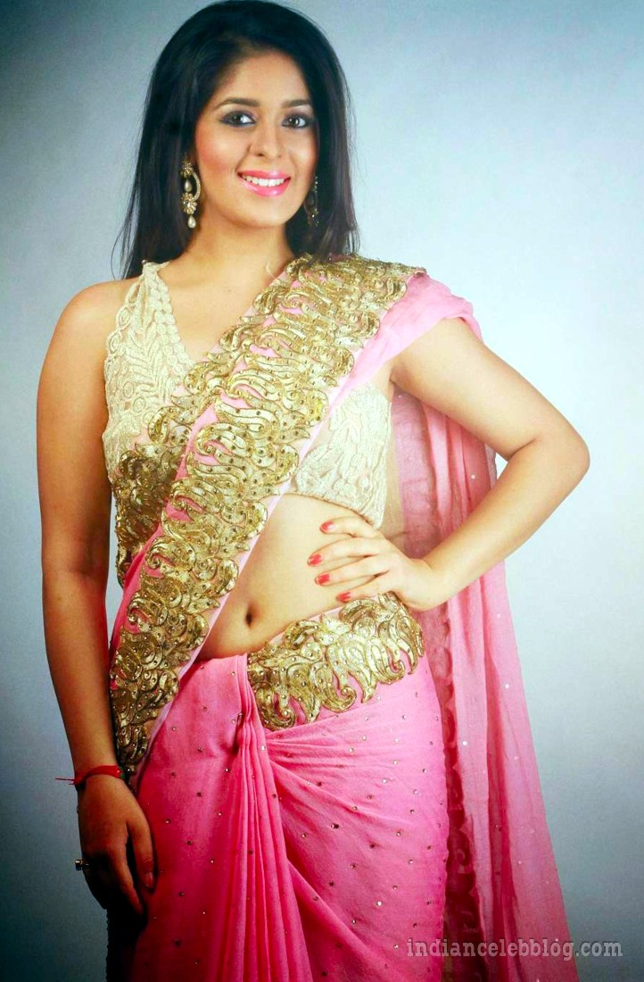 Garima jain hindi tv actress CTS1 20 hot sari photo