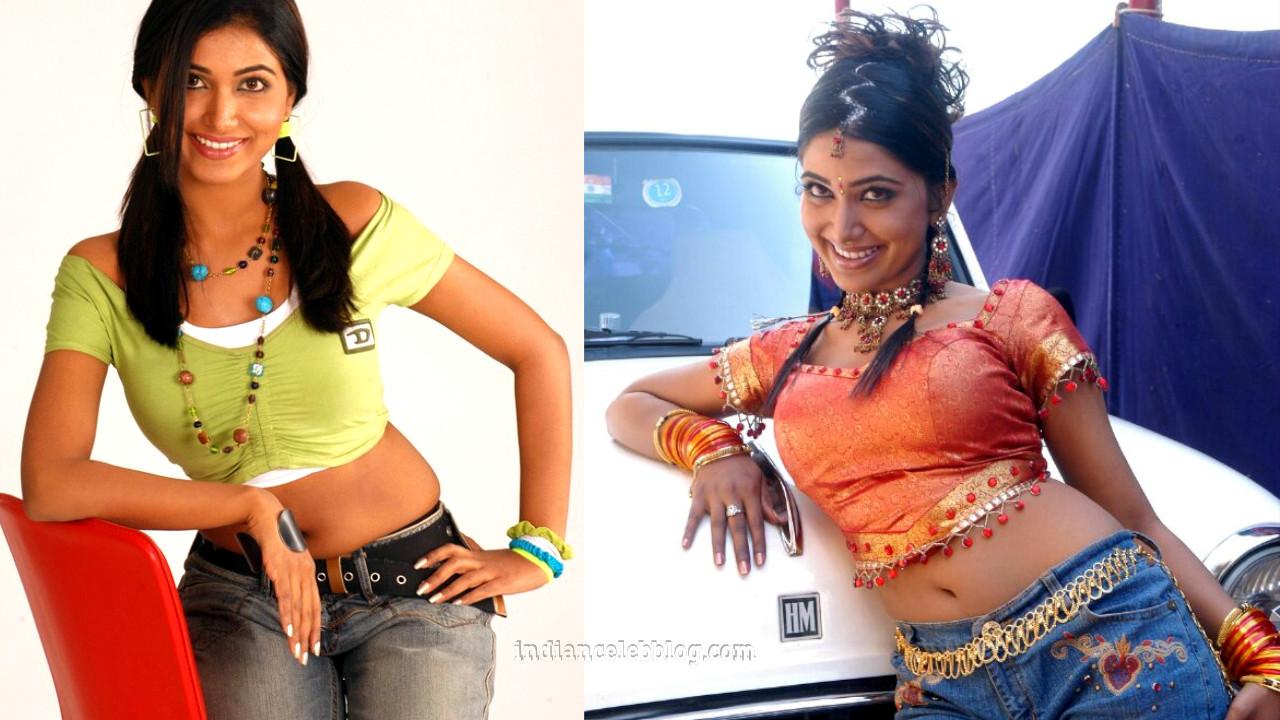 Priya mohan south film and tv actress hot photos