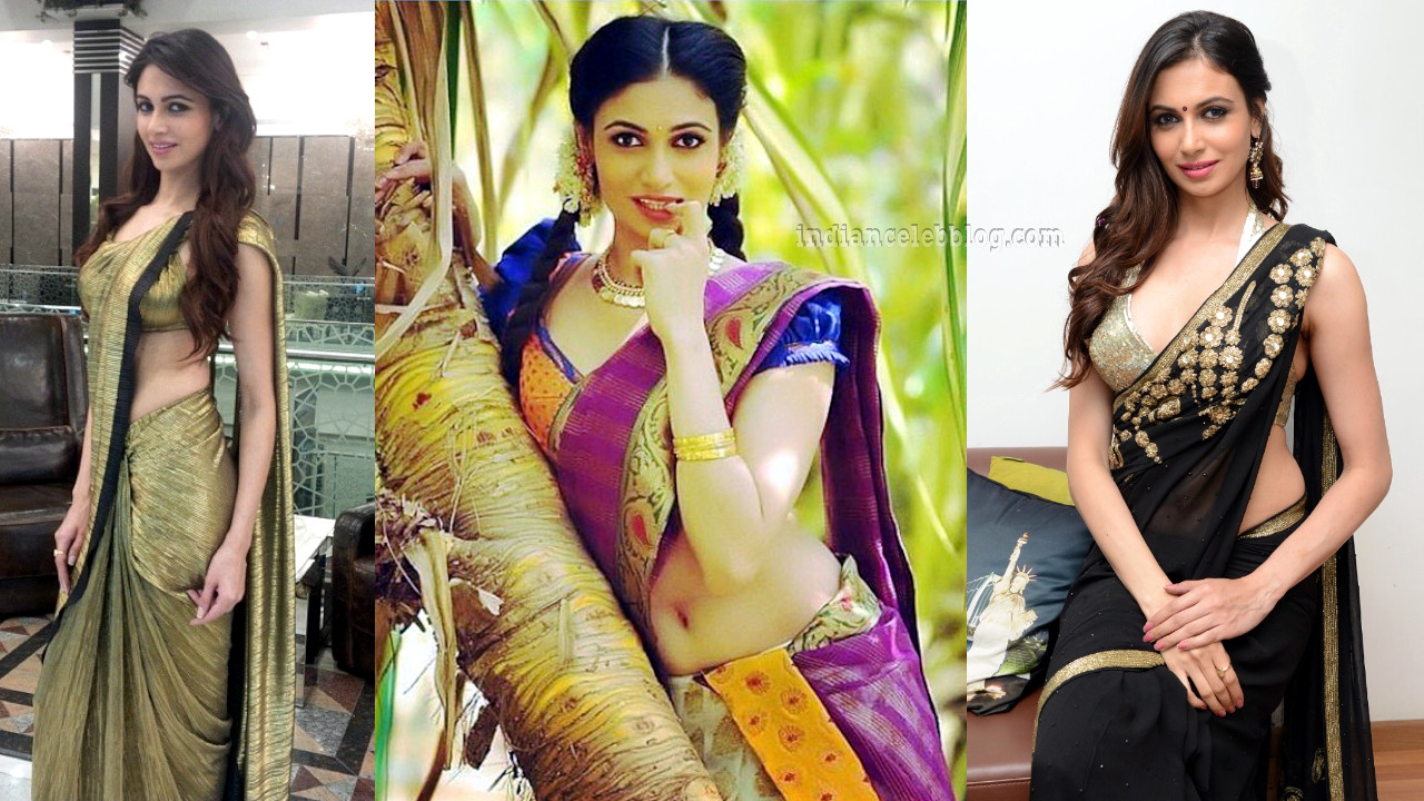 Simran kaur mundi bollywood actress hot sari pics