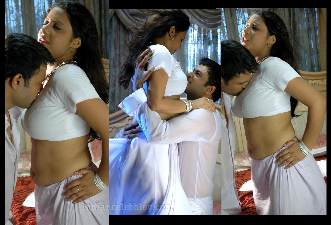 Sunakshi Baradwaj South Indian Actress Hot Saree Song Pics Indiancelebblog Com