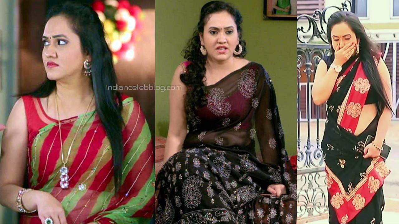 Sindhu kalyan kannada serial actress transparent saree hd caps pics