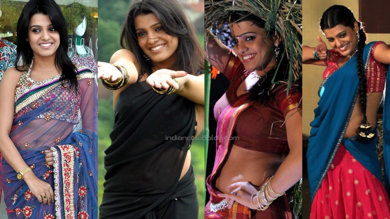 Tashu kaushik telugu actress hot saree navel stills photo gallery