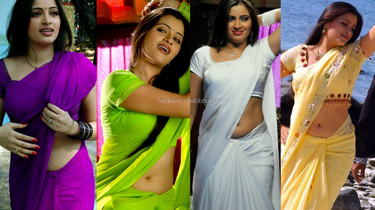 Navneet kaur telugu actress hot saree navel hd stills photo gallery