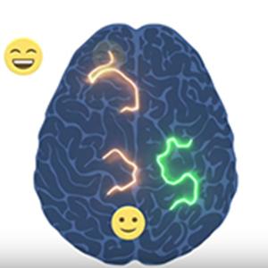 Brain (Photo courtesy: Harvard University)