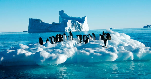 A picturesque view of Antarctica with ice-scapes