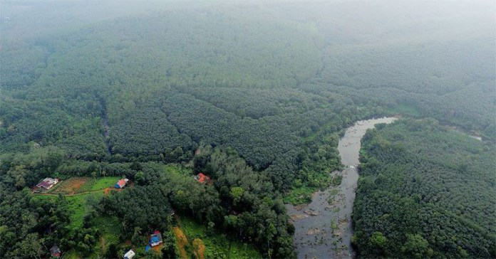 Cheruvally Estate