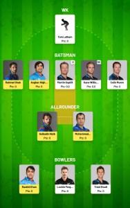Afganistan vs Newzland Worldcup 11th Match Fanfight Team