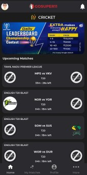 How To Play Fantasy Cricket On GoSuper11?