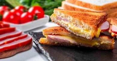 Cheese veg sandwich recipe