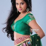 Sexy Indian girl in Blouse showing Big Boobs and Cleavage desi boobs pics hot boobs images Hot Indian Girls photos (1)