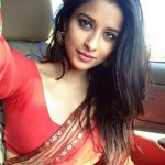 Sexy Indian girl in Blouse showing Big Boobs and Cleavage desi boobs pics hot boobs images Hot Indian Girls photos (12)