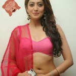 Real Life Indian Hot Girl Photo Real indian girl beauty sexy indian girls images free download (734)