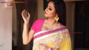 इंडियन रंडी साड़ी ब्लाउज में मोटे मोटे बोबे दीखते हुए Indian Randi In Yellow Saree Xxx (2)