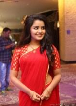 Sexy Indian Bhabhi In Saree Blouse Very Hot And Sexy Striping Saree Photos (4)