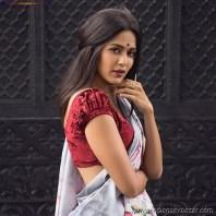 Sexy Indian Bhabhi In Saree Blouse Very Hot And Sexy Striping Saree Photos (7)