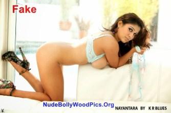 South Indian Actress XXX साउथ फिल्म एक्ट्रेस नयनतारा की नंगी पुंगी गांड चूत और स्तनों की पोर्न फोटो गैलरी (1)