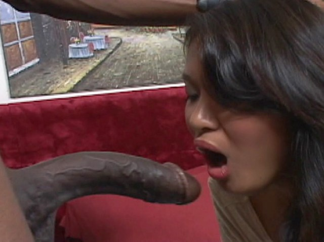 Asian Babe Deep Throat With Bbc Full Hd Porn Movie