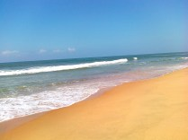 Goa Tourist Places Picture 18