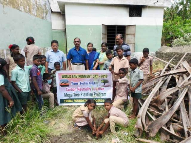 davidson-world-environment-day_2019_b