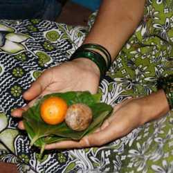 37hallaki_naming04_offering_v_lakshmanan11