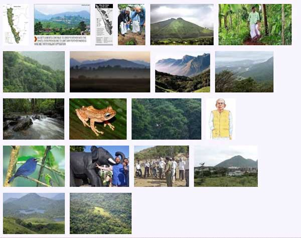west_ghats_ecology_animals_screenshot_05