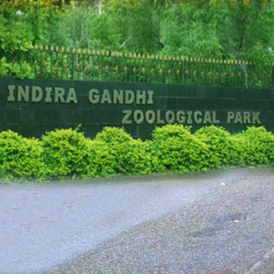 Indira Gandhi Zoological Park Vishakhapatnam   Image Resource : aptdc.gov.in