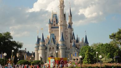 Photo of Disney Inventory Climbs Due to Parks Reopening: Details & Specifics