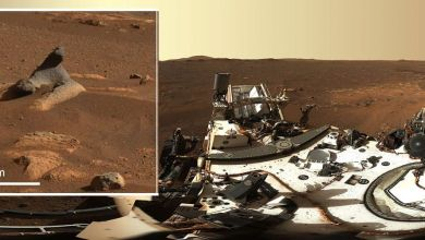 Photo of Ideal Photos, Video clip of NASA's Perseverance Mars Rover's To start with Two Weeks