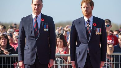 Photo of Prince Harry & Prince William Indication Off on Princess Diana Statue Style