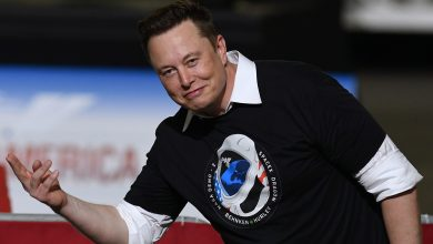 Photo of Russia's New Place Main Invitations Elon Musk to Tea to Talk about Rockets