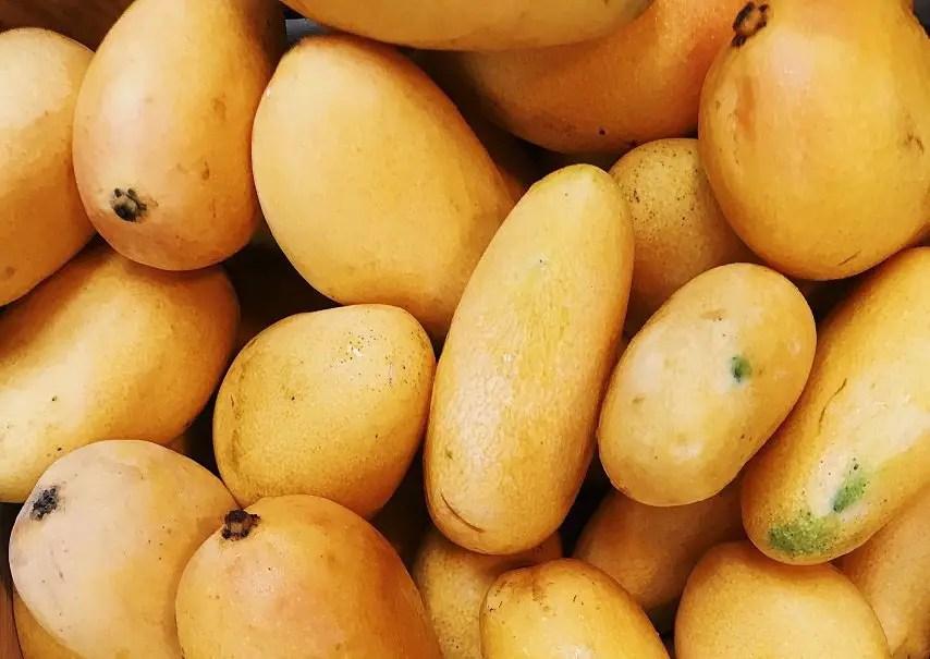 Mango in India Language