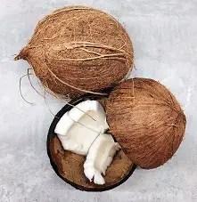 Coconut in India Language