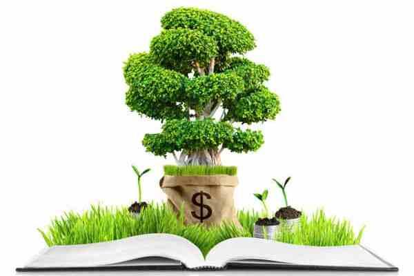 Author Money Tree