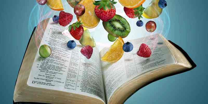 Don't Be Hasty - Cultivating a heart of fruitfulness ready to receive the Word of God