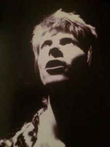 Bowie by Brian Ward