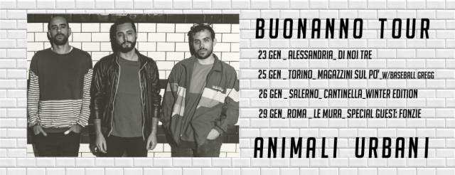 animali urbani
