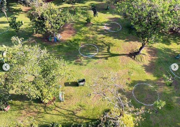Lingkaran Piknik Ragunan, Siasat Untuk Antisipasi Kerumunan