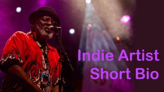 Indie Artist Short Bio by IndieMusicNashville.com
