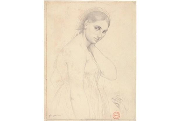 Leonardo to Matisse Teaser