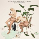 Days of Abandon/ The Pains of Being Pure At Heart