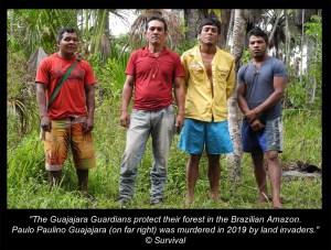 The Guajajara Guardians