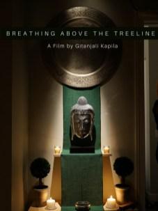 Breathing above the Treeline