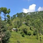 Binsar - View from Dalar Villay Homestay