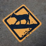goat poop danger sign