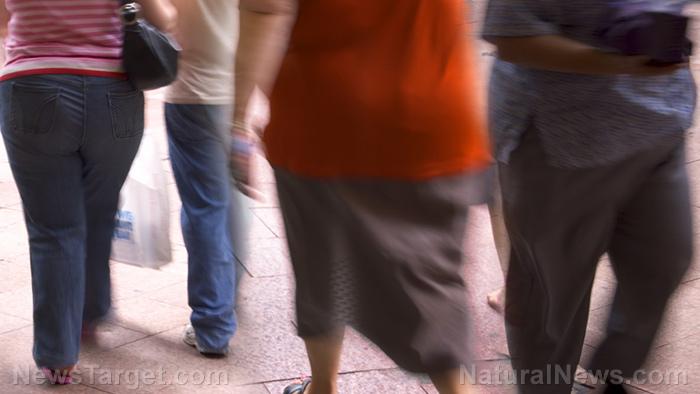 Het is tijd dat we obesitas als een besmettelijke ziekte categoriseren